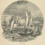 NY Bay Paddleboat