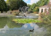 Italian Gardens 3