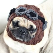 8-animals-think-theyre-steampunk-plus-tips-for-steampunking-your-own-pet.w654