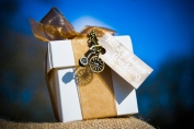 a023-steampunk-wedding-favor-giveaway-golden-box